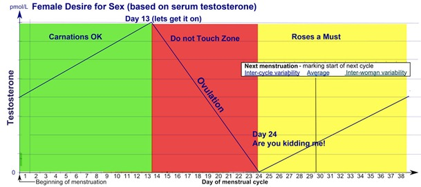 Testosterone-and-Female-Sex-Drive